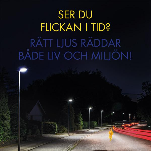 Ser_du_flickan